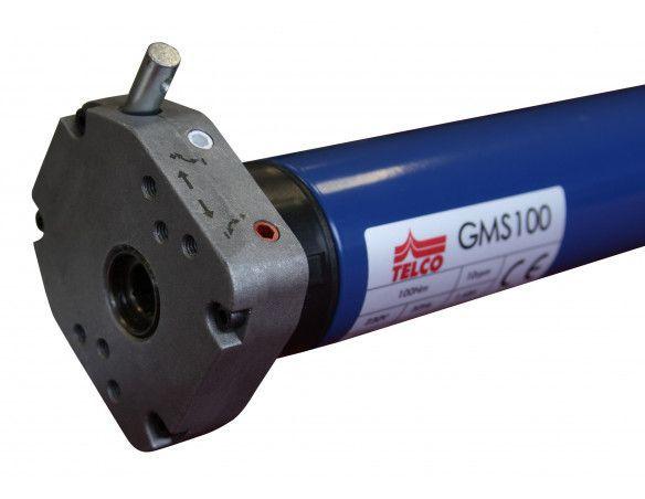 GMS100